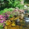 Our Garden_FishStatue