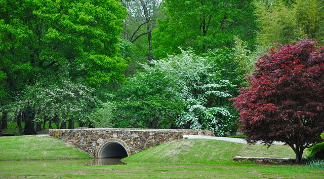 Our Garden- Bridge