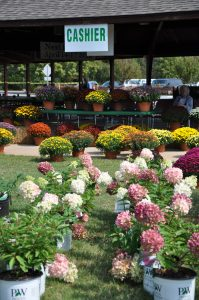 7th Annual Fall Plant Sale Huntsville Botanical Garden