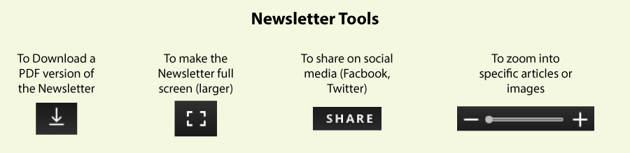 Newsletter-Tools-