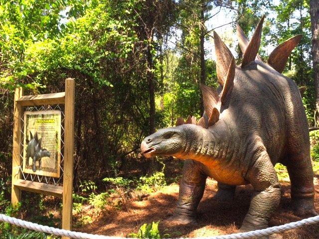 Stegosaurus outdoors