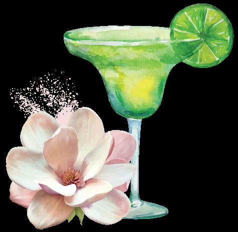 Margaritas and Magnolias