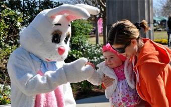 Bunny Bonanza Member Event