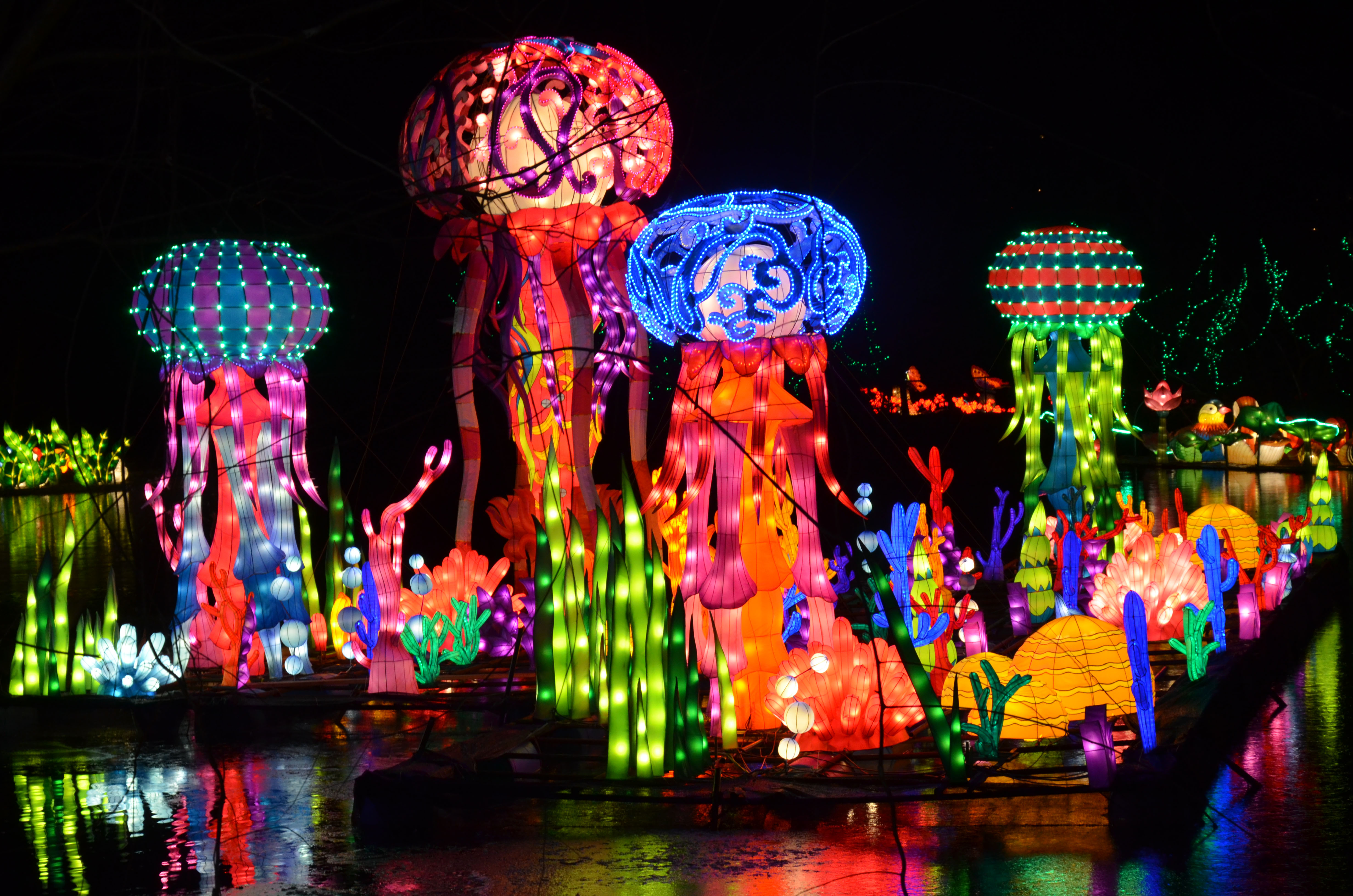 Lanterns 8